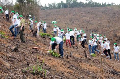 Honda Vietnam  Tree Planting Day_02