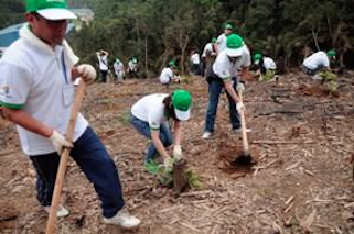 Honda Vietnam  Tree Planting Day_04